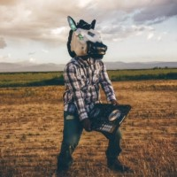 Introducing Elektrohorse: The Latest Hybrid in Country Music