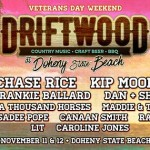 Driftwood At Doheny State Beach 2017 Lineup